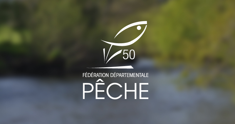 Animation Pêche au Toc