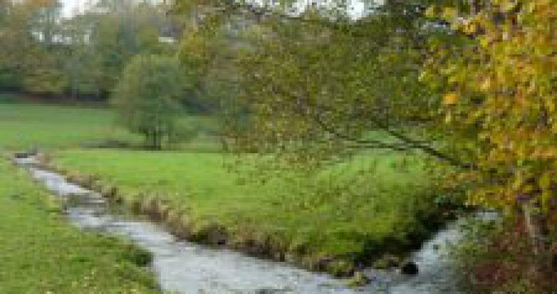 Les Pêcheurs de Cerisy-la-Forêt