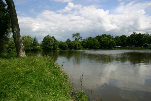 L'étang des Sarcelles