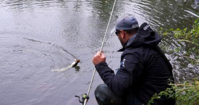 Reportage Halieutique n° 32 La pêche des carnassiers sur l'Orne (61)