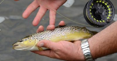 Pêche de la Truite, parcours de pêche de l'AAPPMA de la Sinope