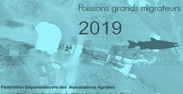 Rapport 2019 Station de Comptage des Claies de Vire