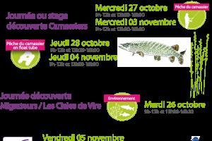 Maison de la Pêche et de la Nature / Journée ou stage carnassiers